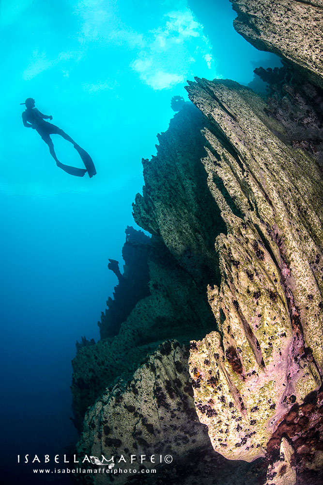 PHILIPPINES-FREE-DIVING