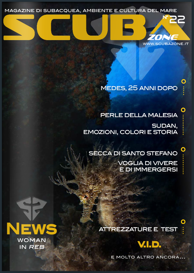 """Survivor"" by Isabella Maffei is cover of the Scubazone 22 Magazine"